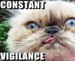 Vigilance, My ConstantCompanion